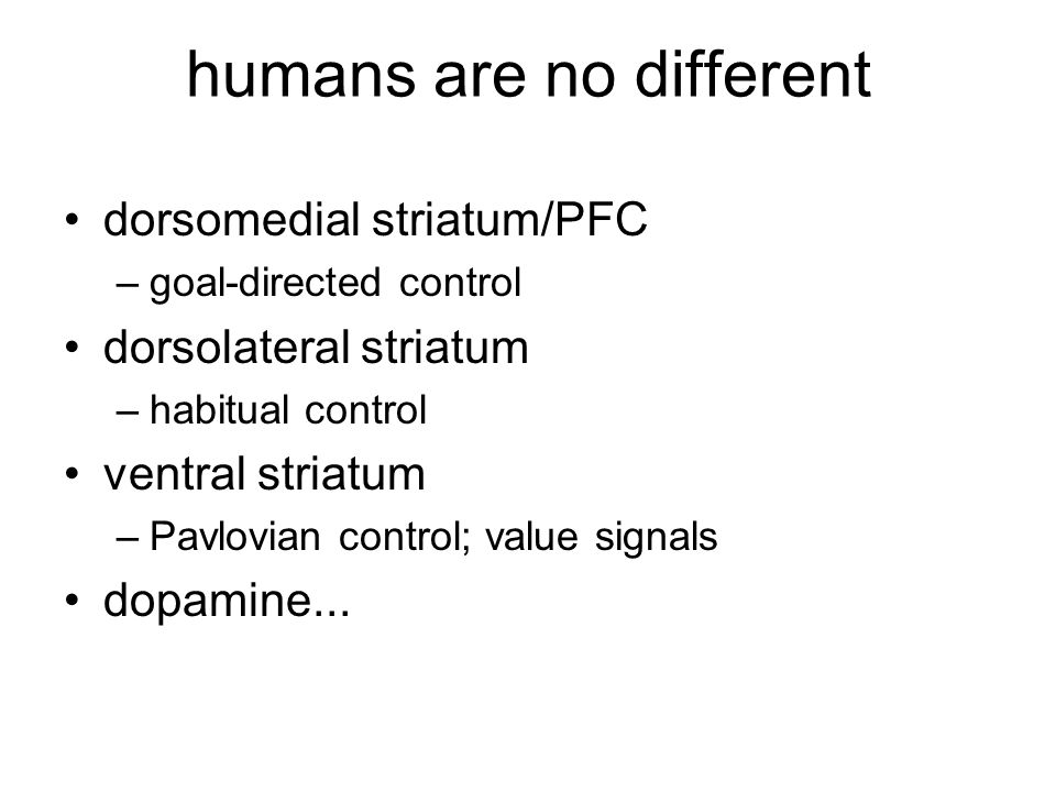 humans are no different
