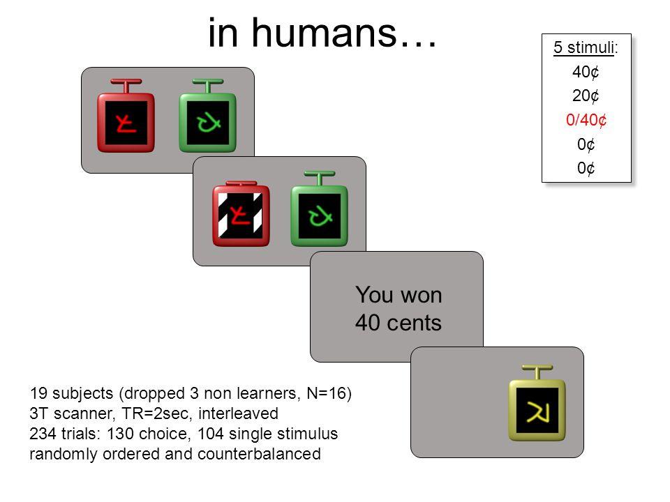 in humans… You won 40 cents < 1 sec 5 sec ISI 0.5 sec 2-5sec ITI