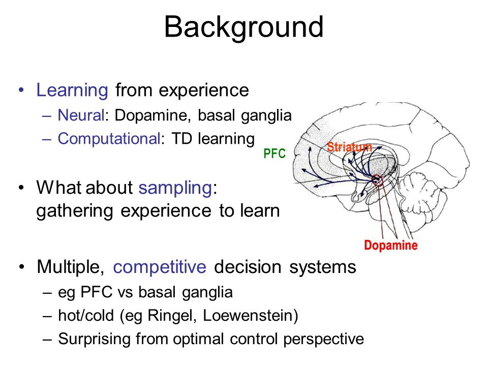 Background Learning from experience