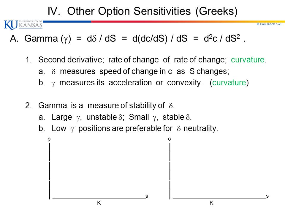 IV. Other Option Sensitivities (Greeks)