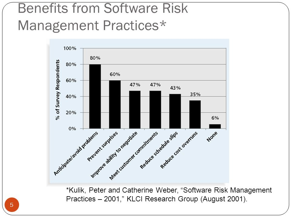 Benefits from Software Risk Management Practices*