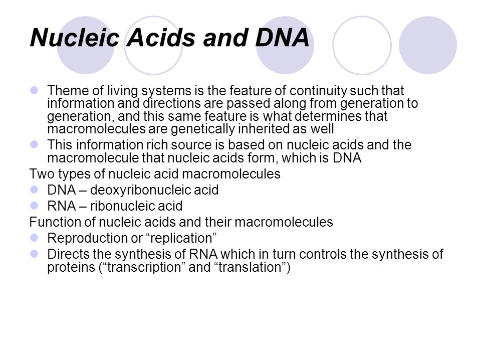 Nucleic Acids and DNA