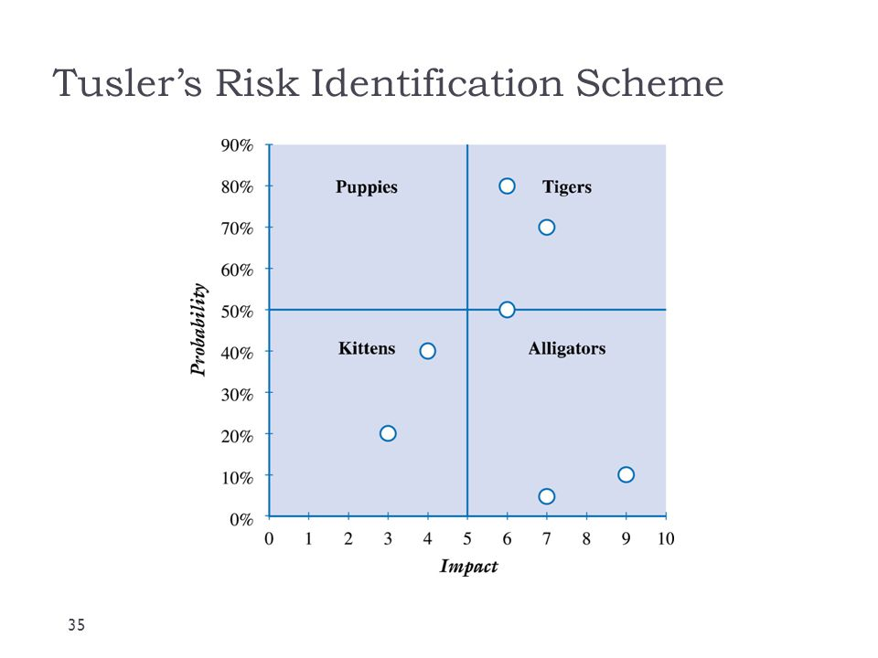 Tusler's Risk Identification Scheme