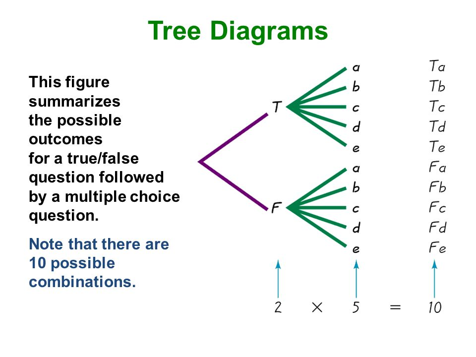 Tree Diagrams This figure summarizes the possible outcomes