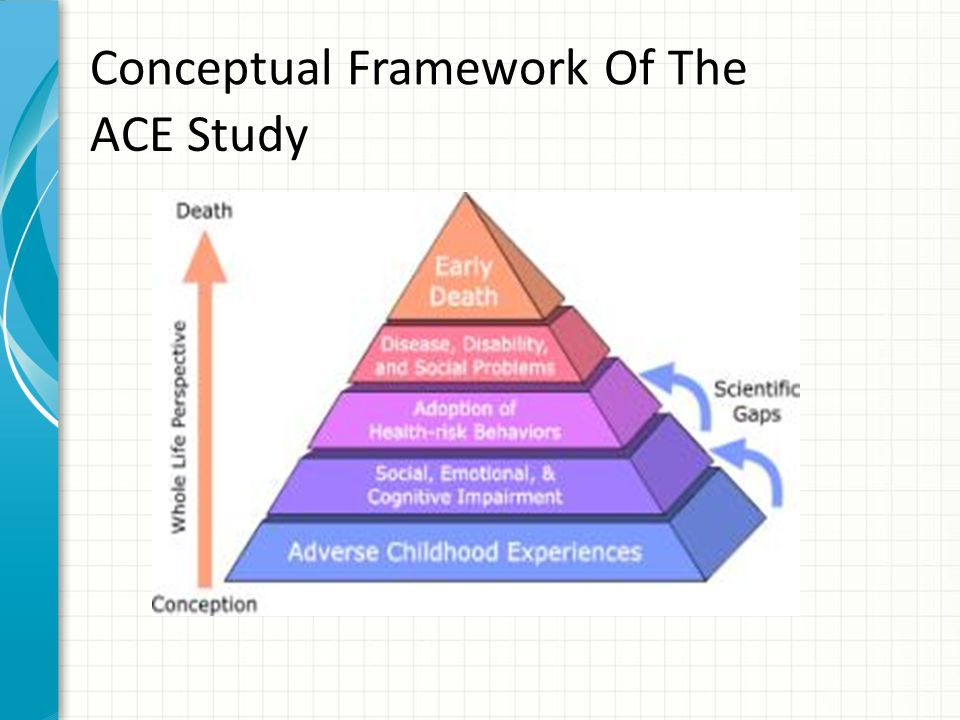 Conceptual Framework Of The