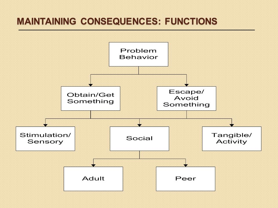 Maintaining Consequences: Functions
