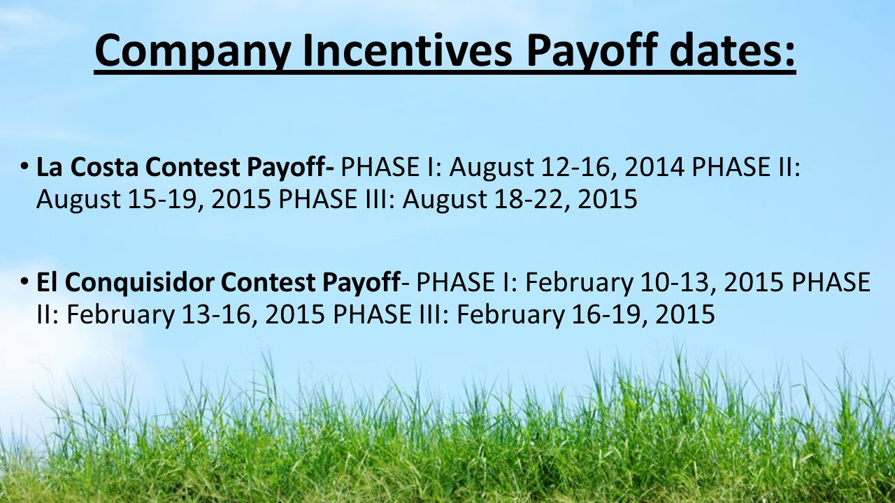 Company Incentives Payoff dates: