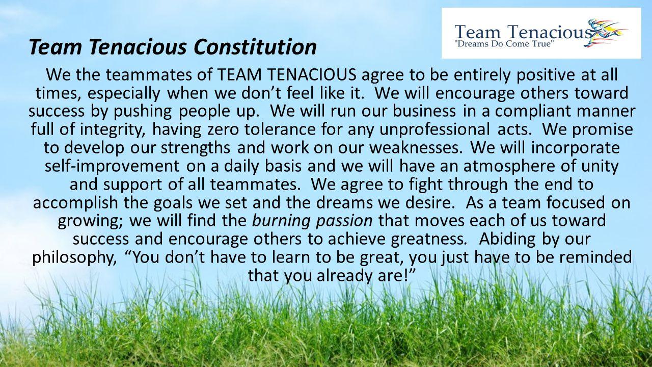 Team Tenacious Constitution