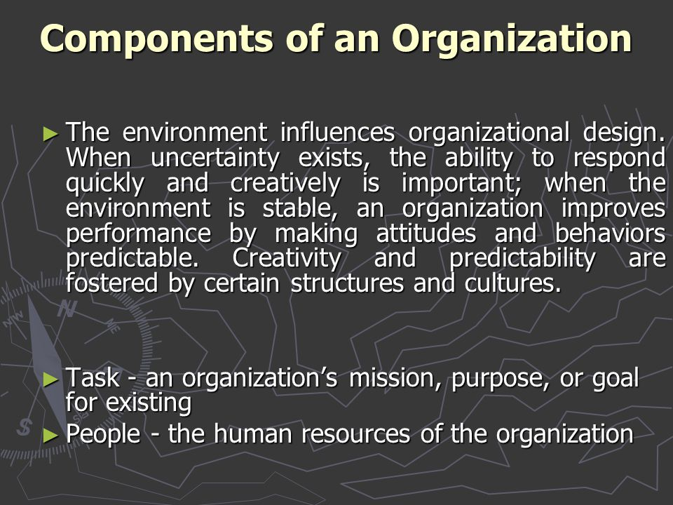 Components of an Organization