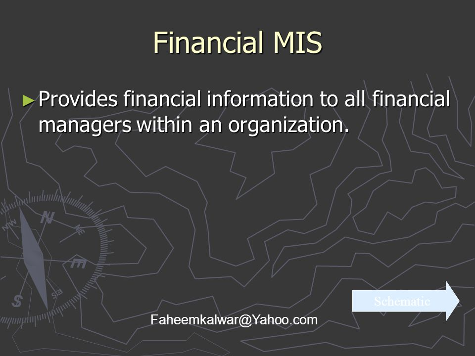 Financial MIS Provides financial information to all financial managers within an organization. Schematic.