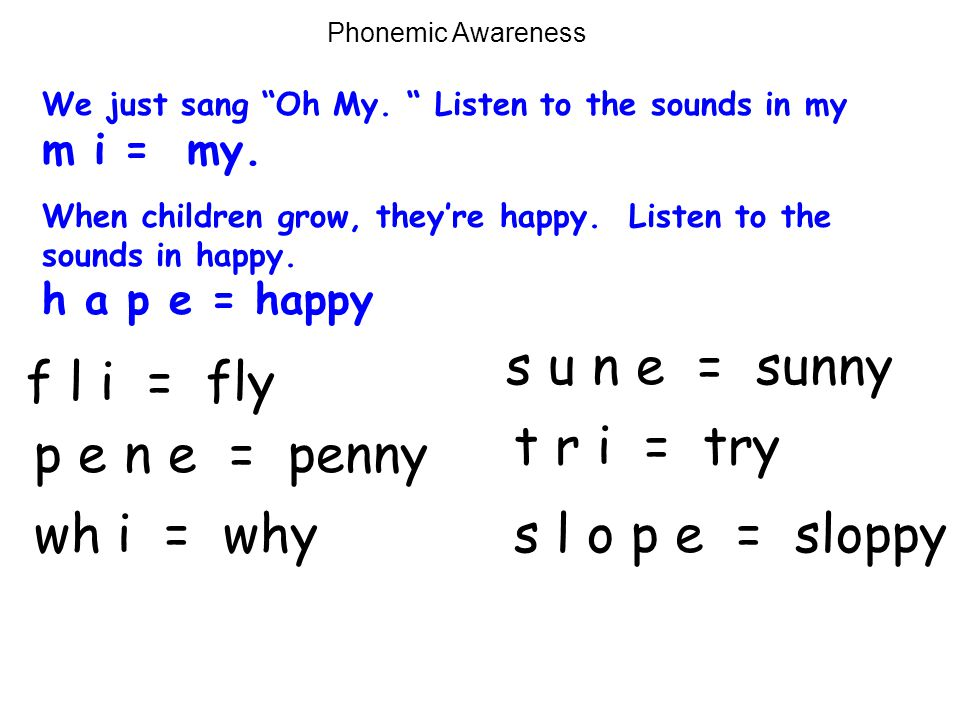 s u n e = sunny f l i = fly t r i = try p e n e = penny wh i = why