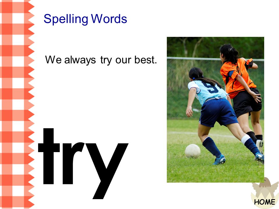 Spelling Words We always try our best. try