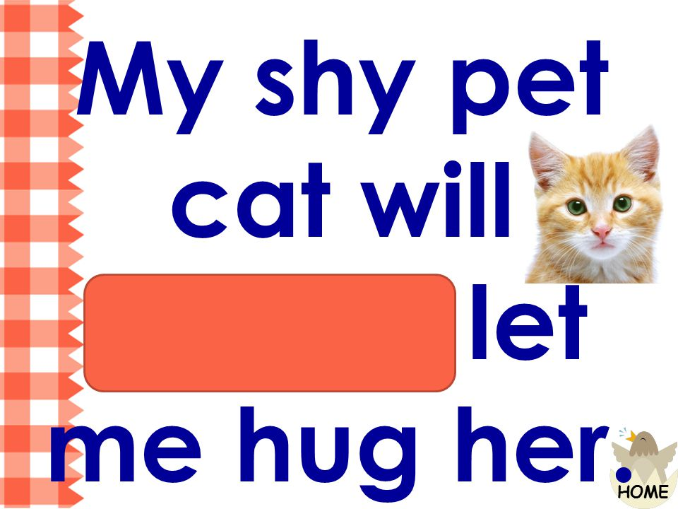 My shy pet cat will always let me hug her.