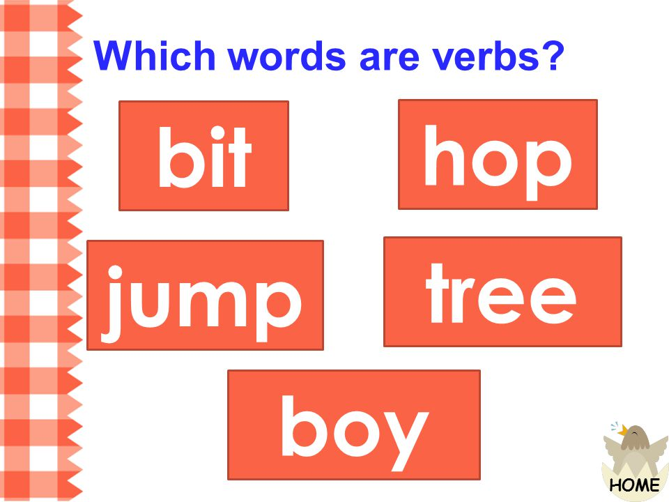 Which words are verbs bit hop jump tree boy