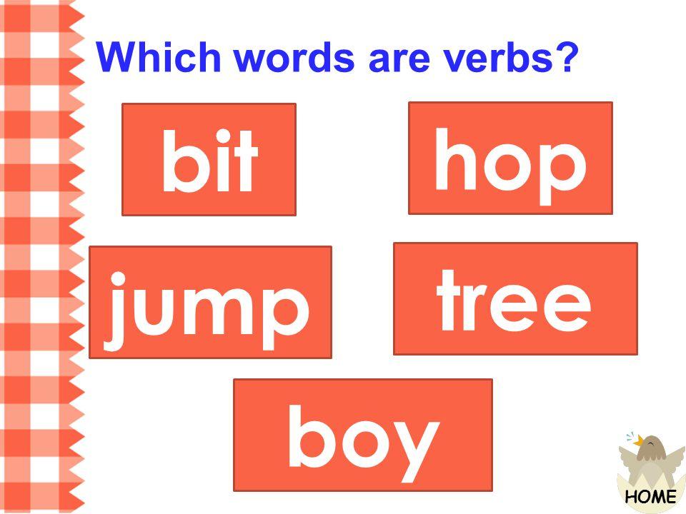Which words are verbs bit hop jump tree boy