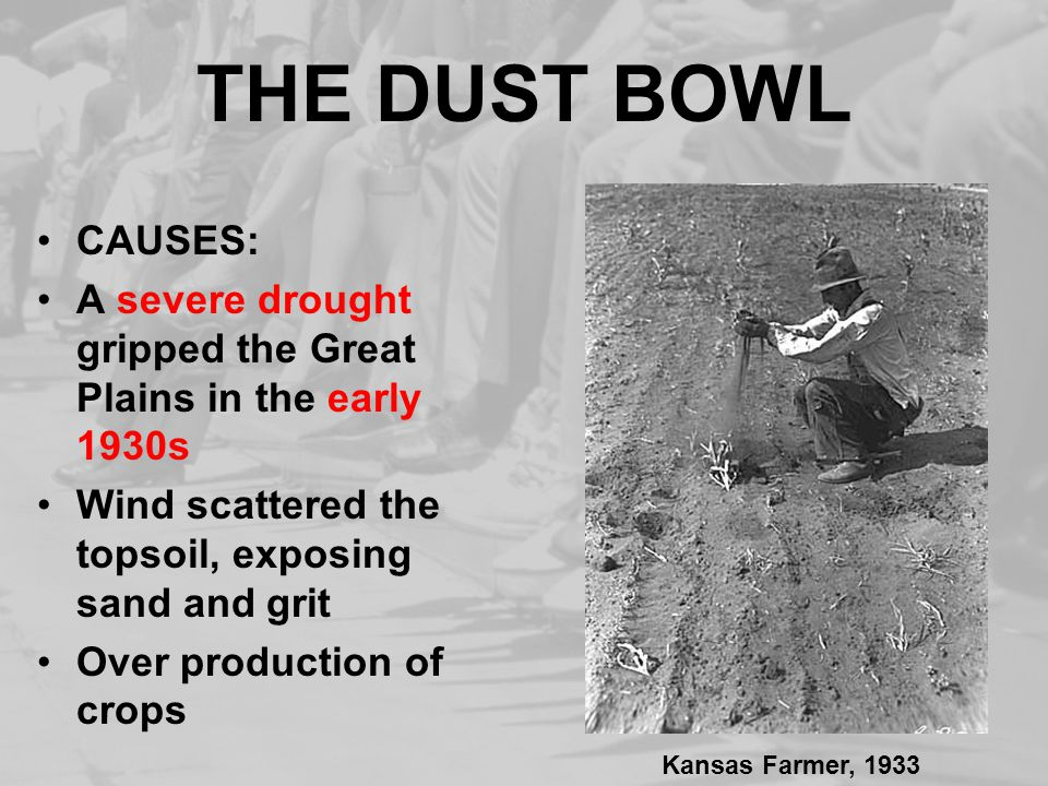 THE DUST BOWL CAUSES: A severe drought gripped the Great Plains in the early 1930s. Wind scattered the topsoil, exposing sand and grit.