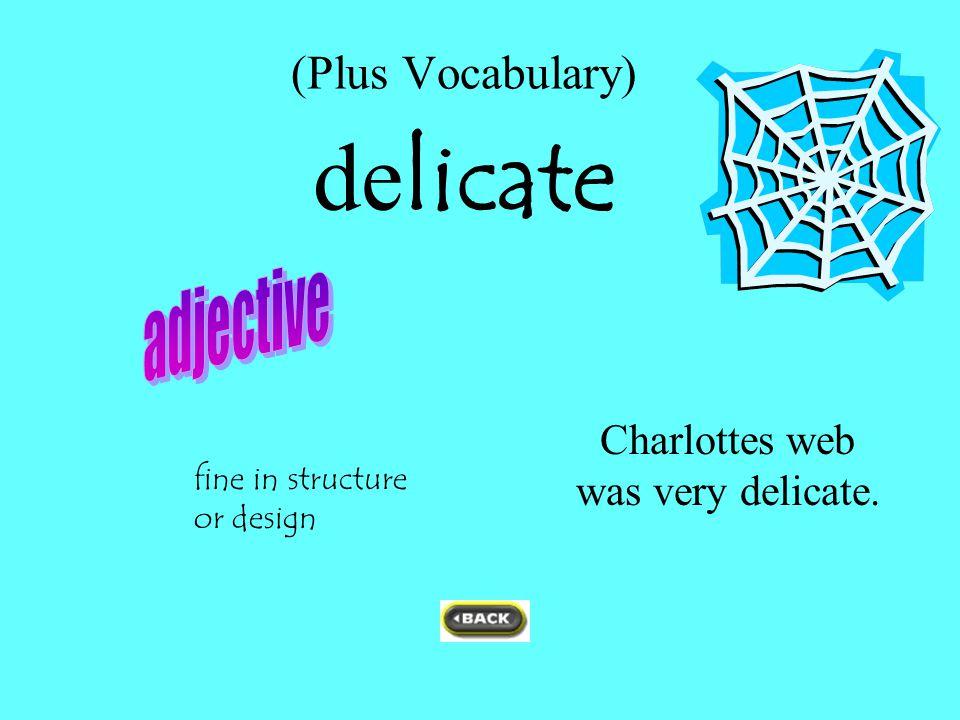 (Plus Vocabulary) delicate