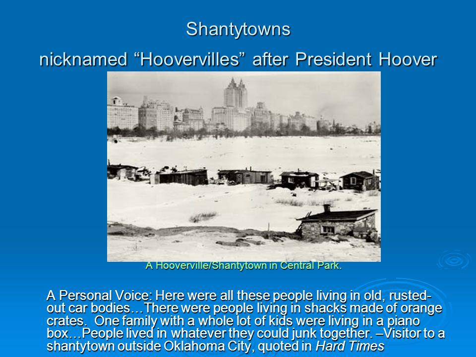 Shantytowns nicknamed Hoovervilles after President Hoover