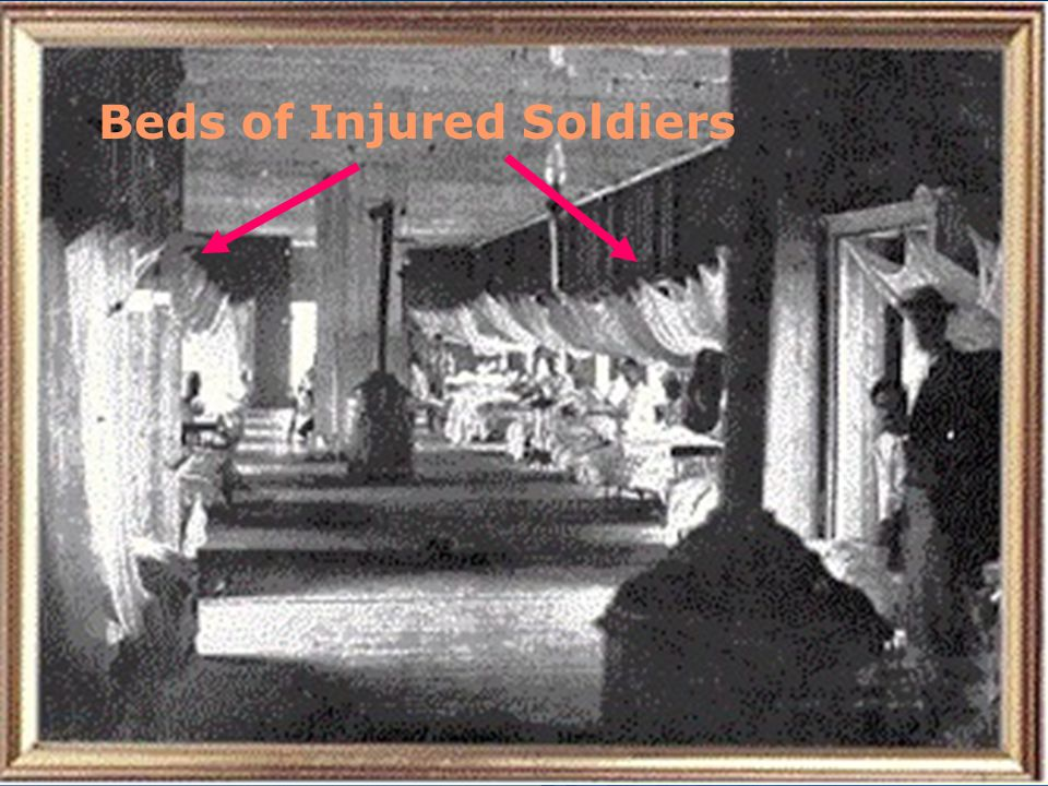 Beds of Injured Soldiers