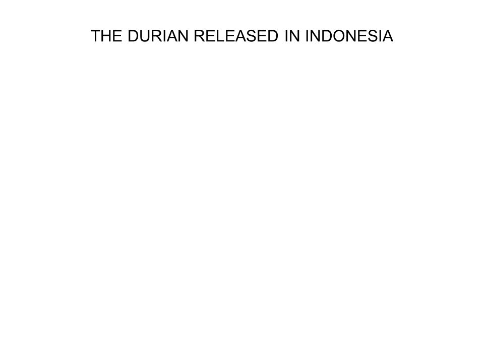 THE DURIAN RELEASED IN INDONESIA
