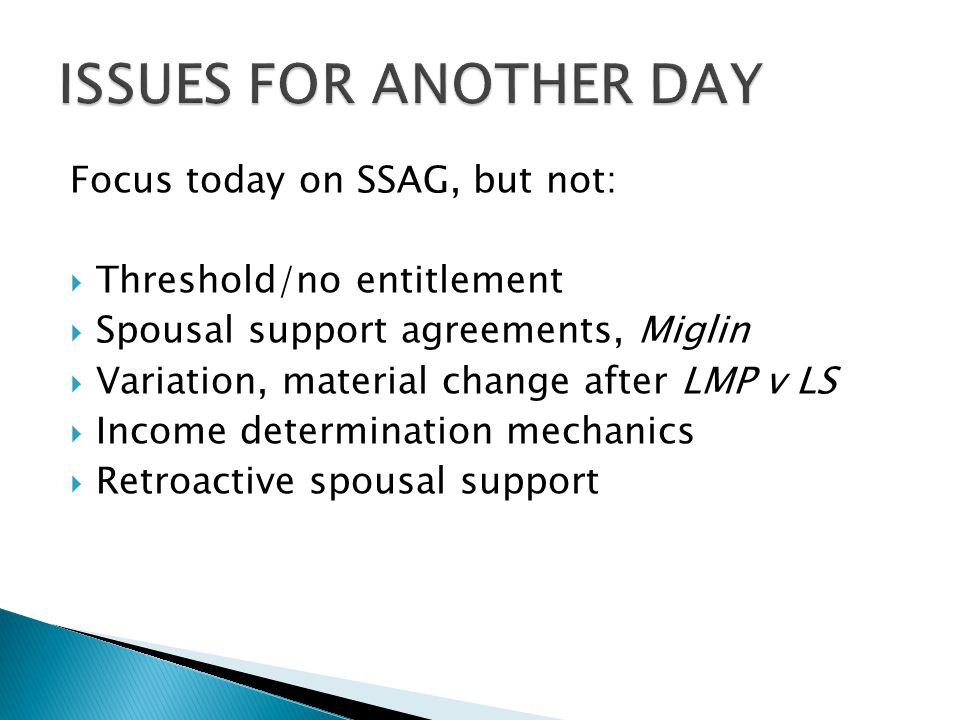 ISSUES FOR ANOTHER DAY Focus today on SSAG, but not: