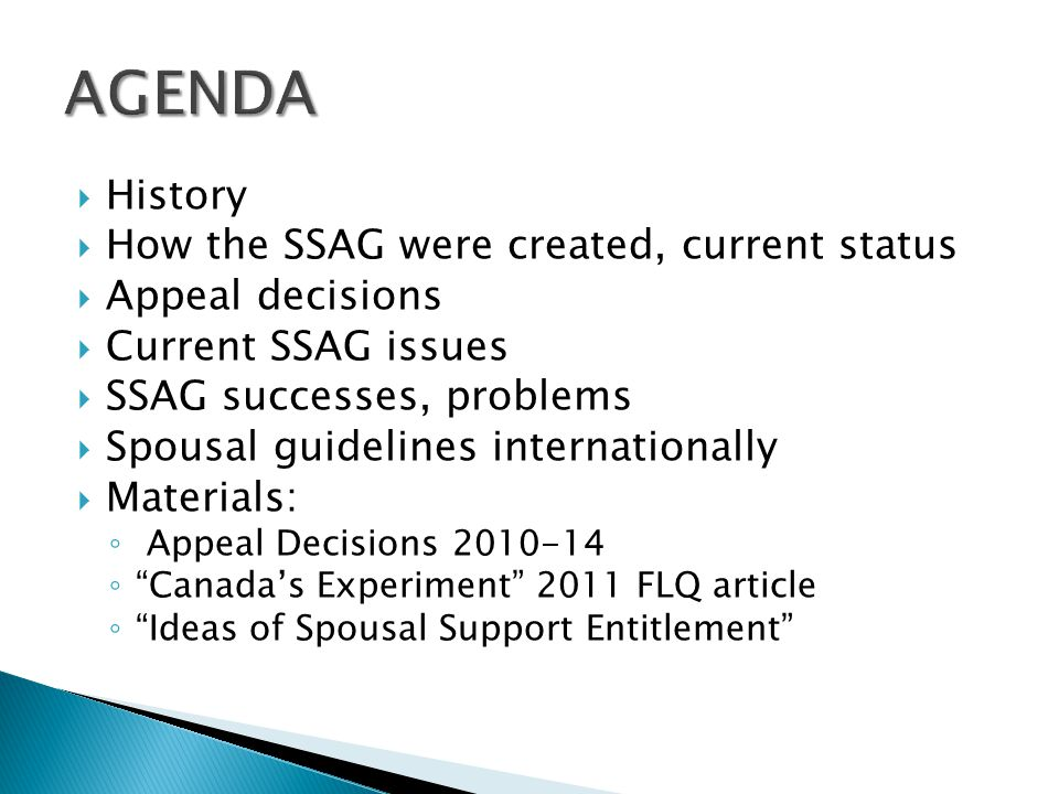 AGENDA History How the SSAG were created, current status