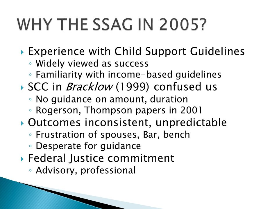 WHY THE SSAG IN 2005 Experience with Child Support Guidelines