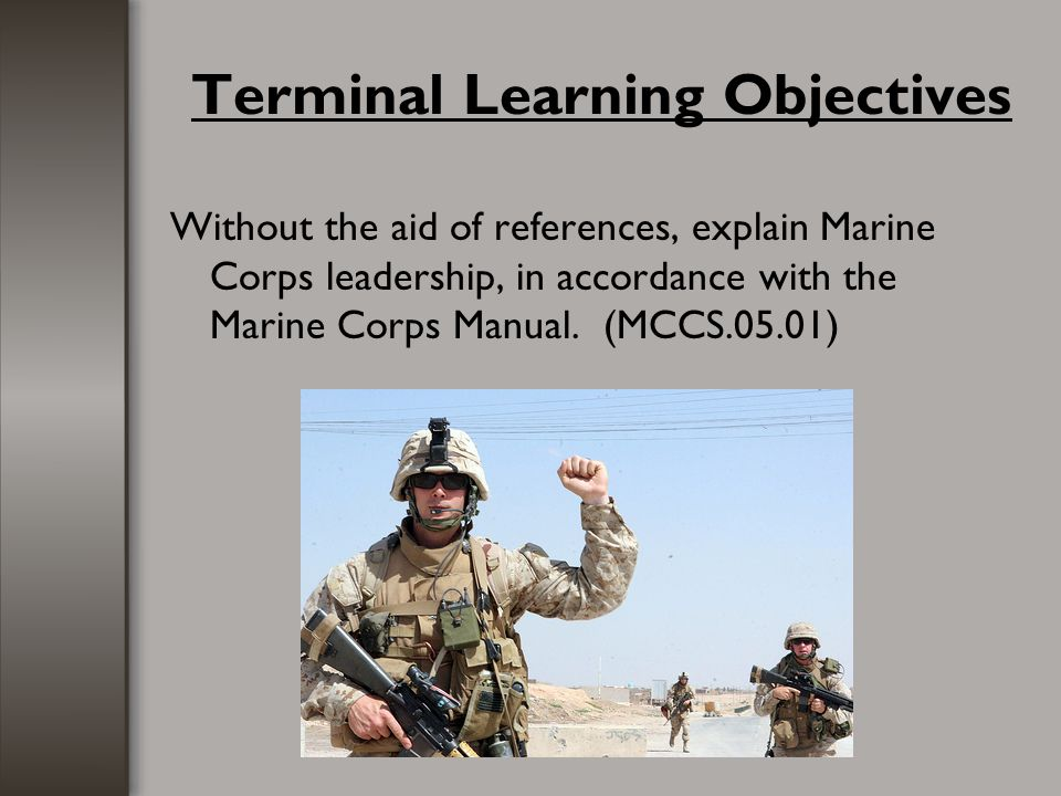Terminal Learning Objectives
