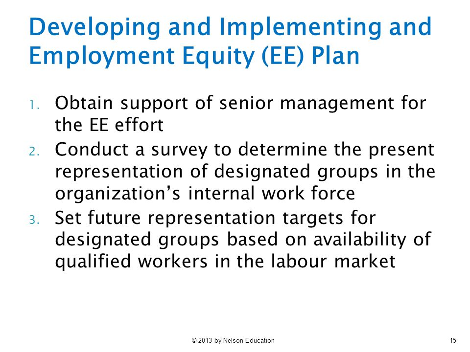 Developing and Implementing and Employment Equity (EE) Plan