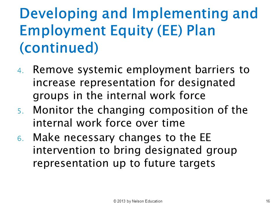 Developing and Implementing and Employment Equity (EE) Plan (continued)