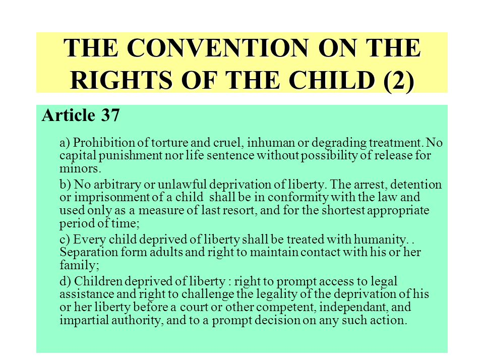 THE CONVENTION ON THE RIGHTS OF THE CHILD (2)
