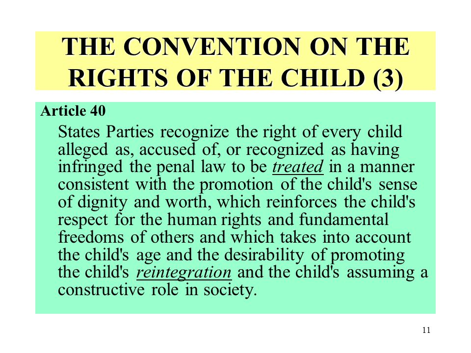 THE CONVENTION ON THE RIGHTS OF THE CHILD (3)