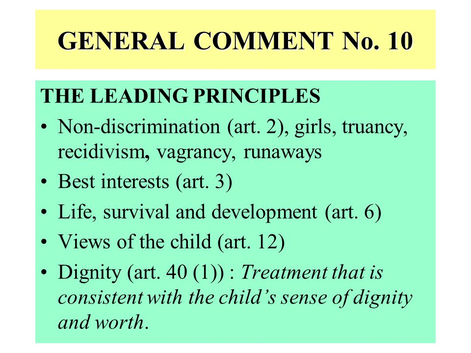 GENERAL COMMENT No. 10 THE LEADING PRINCIPLES