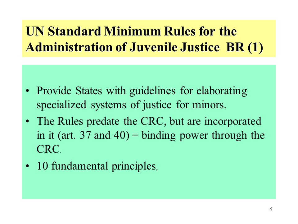 UN Standard Minimum Rules for the Administration of Juvenile Justice BR (1)