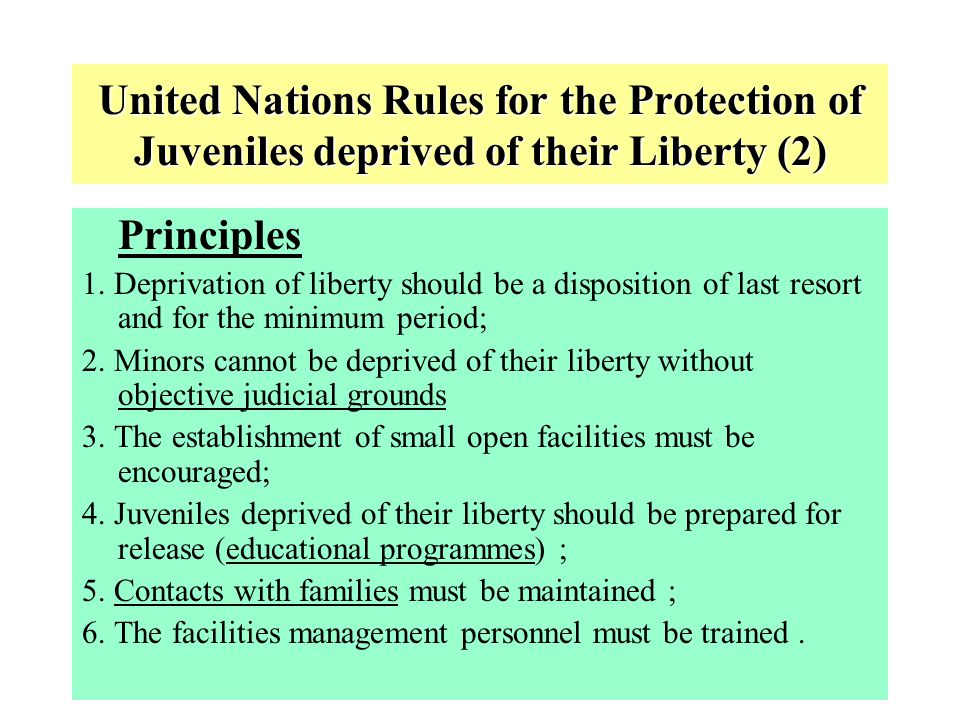 United Nations Rules for the Protection of Juveniles deprived of their Liberty (2)