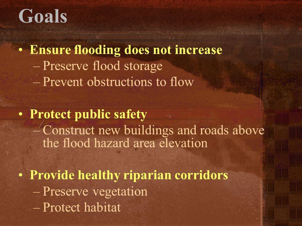 Goals Ensure flooding does not increase Preserve flood storage