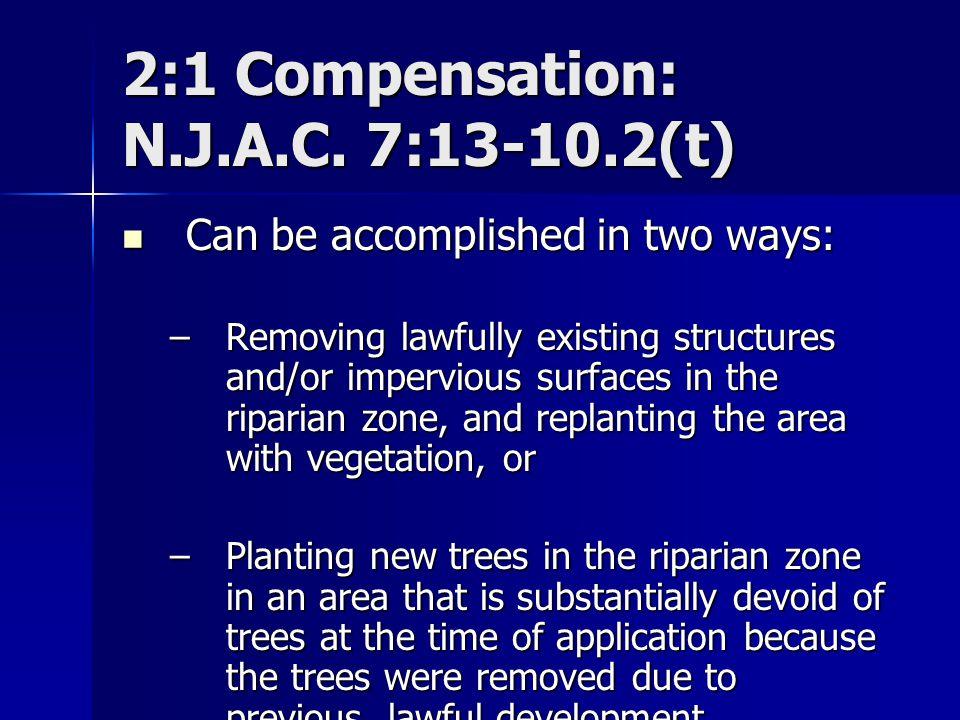 2:1 Compensation: N.J.A.C. 7:13-10.2(t)