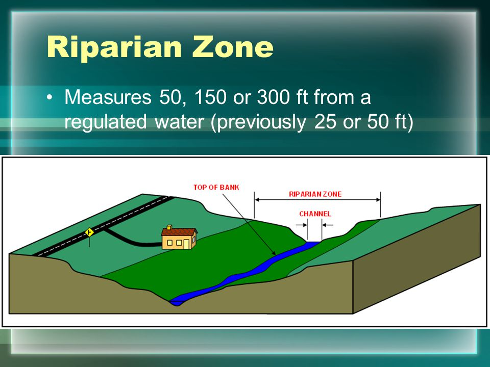 Riparian Zone Measures 50, 150 or 300 ft from a regulated water (previously 25 or 50 ft)
