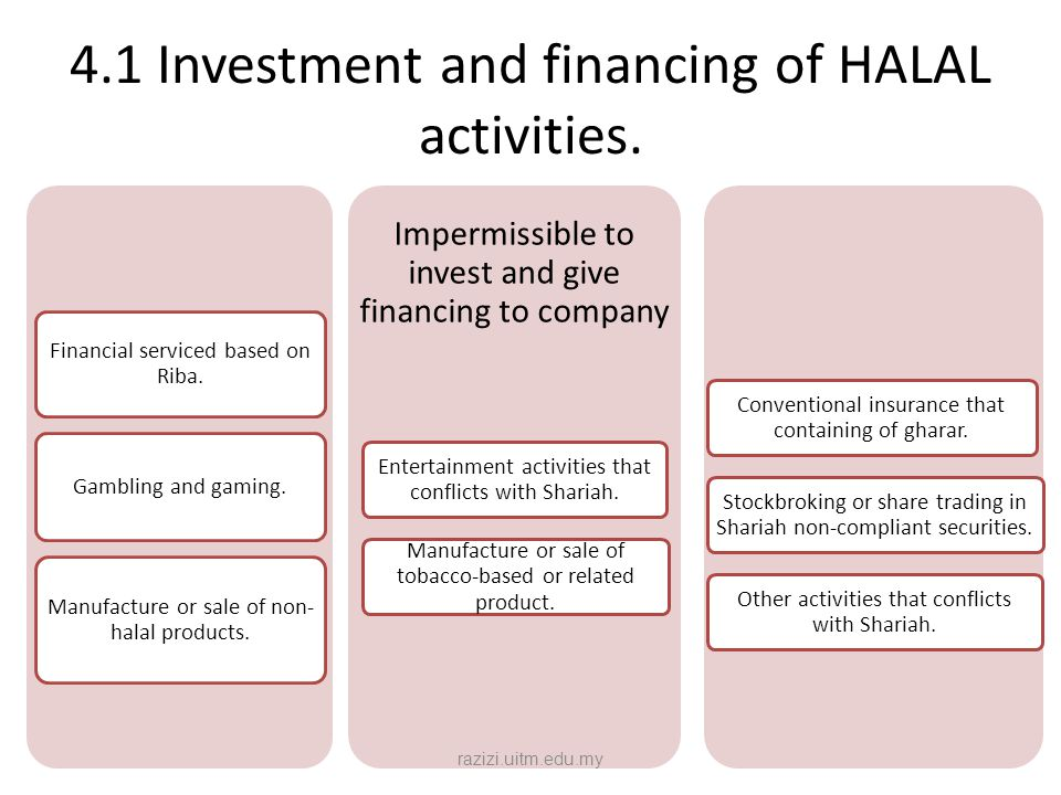 4.1 Investment and financing of HALAL activities.