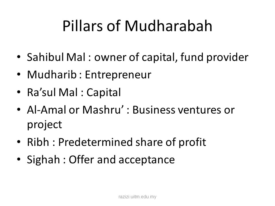 Pillars of Mudharabah Sahibul Mal : owner of capital, fund provider