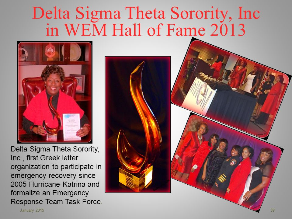 Delta Sigma Theta Sorority, Inc in WEM Hall of Fame 2013