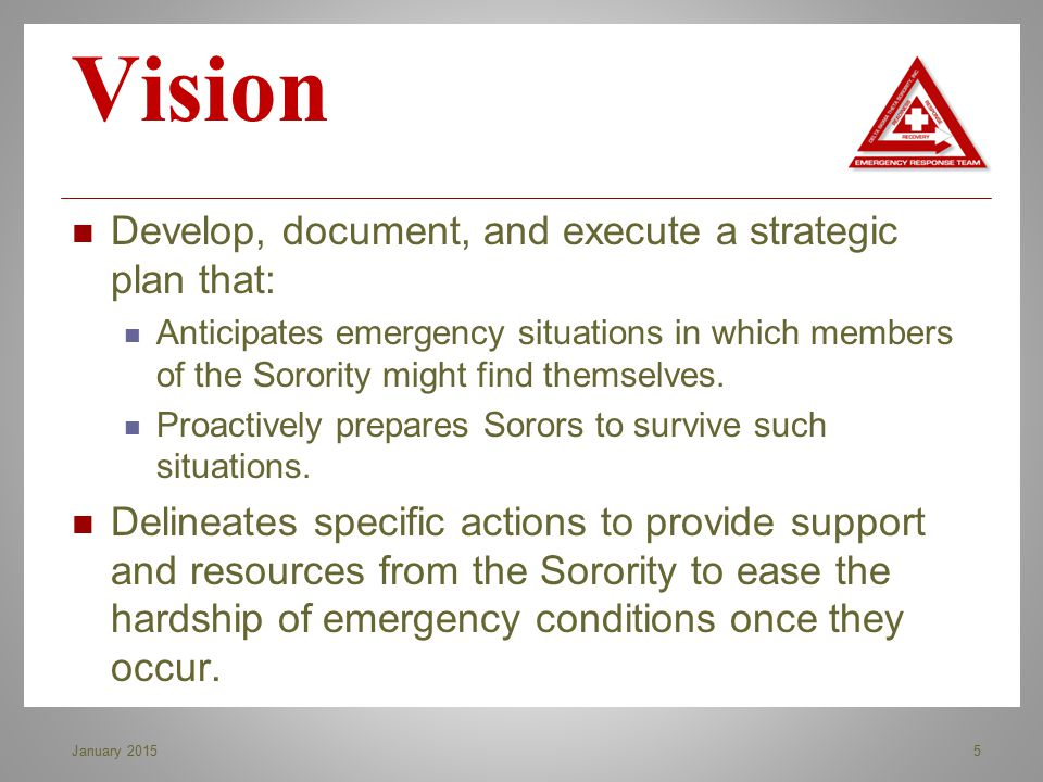 Vision Develop, document, and execute a strategic plan that: