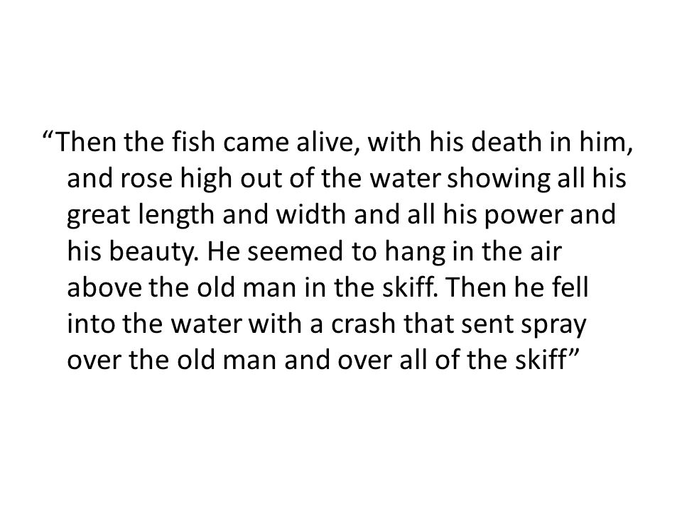 Then the fish came alive, with his death in him, and rose high out of the water showing all his great length and width and all his power and his beauty.