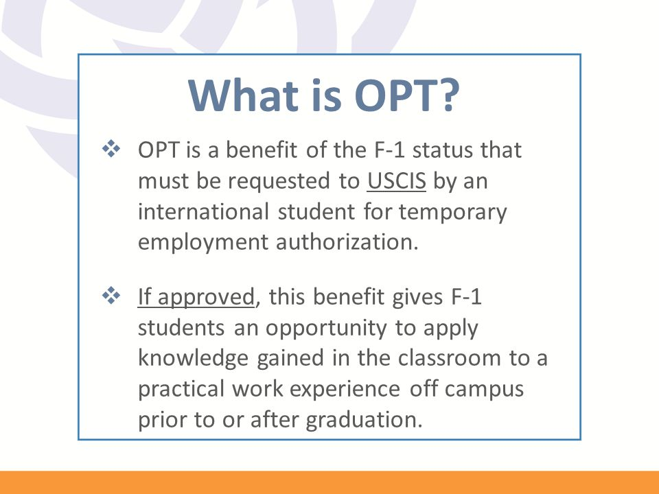 What is OPT