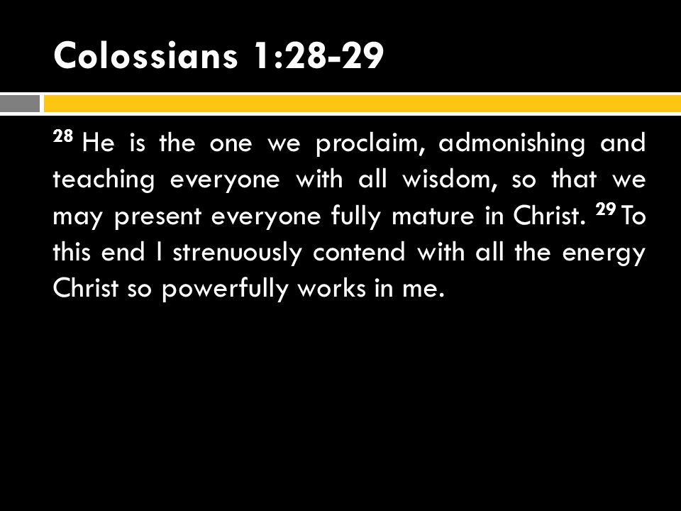 Colossians 1:28-29
