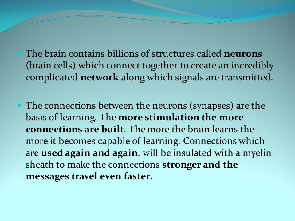 The brain contains billions of structures called neurons (brain cells) which connect together to create an incredibly complicated network along which signals are transmitted.