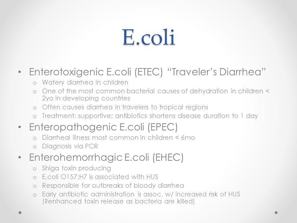 E.coli Enterotoxigenic E.coli (ETEC) Traveler's Diarrhea