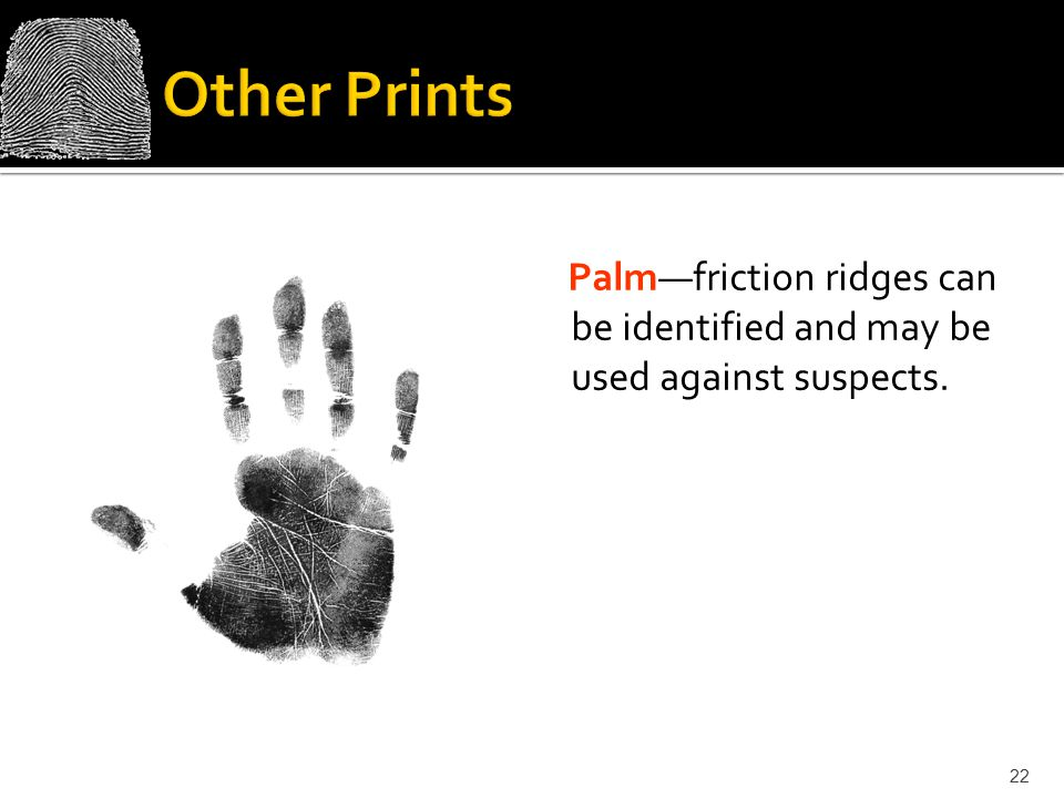 Other Prints Palm—friction ridges can be identified and may be used against suspects.