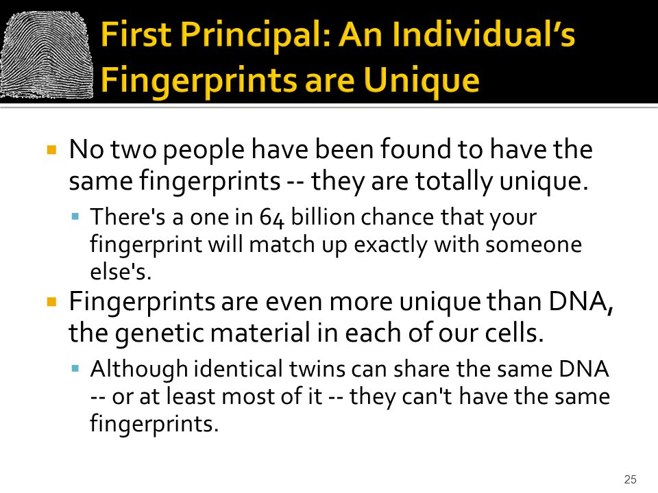 First Principal: An Individual's Fingerprints are Unique
