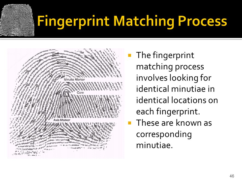 Fingerprint Matching Process